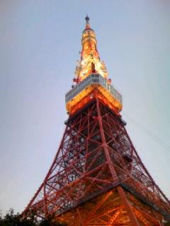 夕方のタワー!