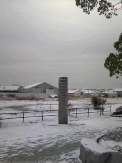 千葉は雪が