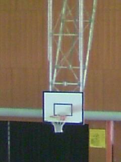 バスケ観戦