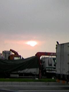 カラスと日の出