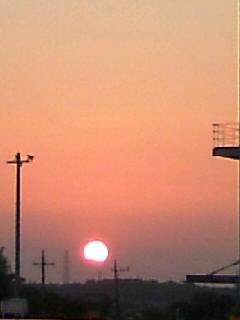 綺麗な夕陽です