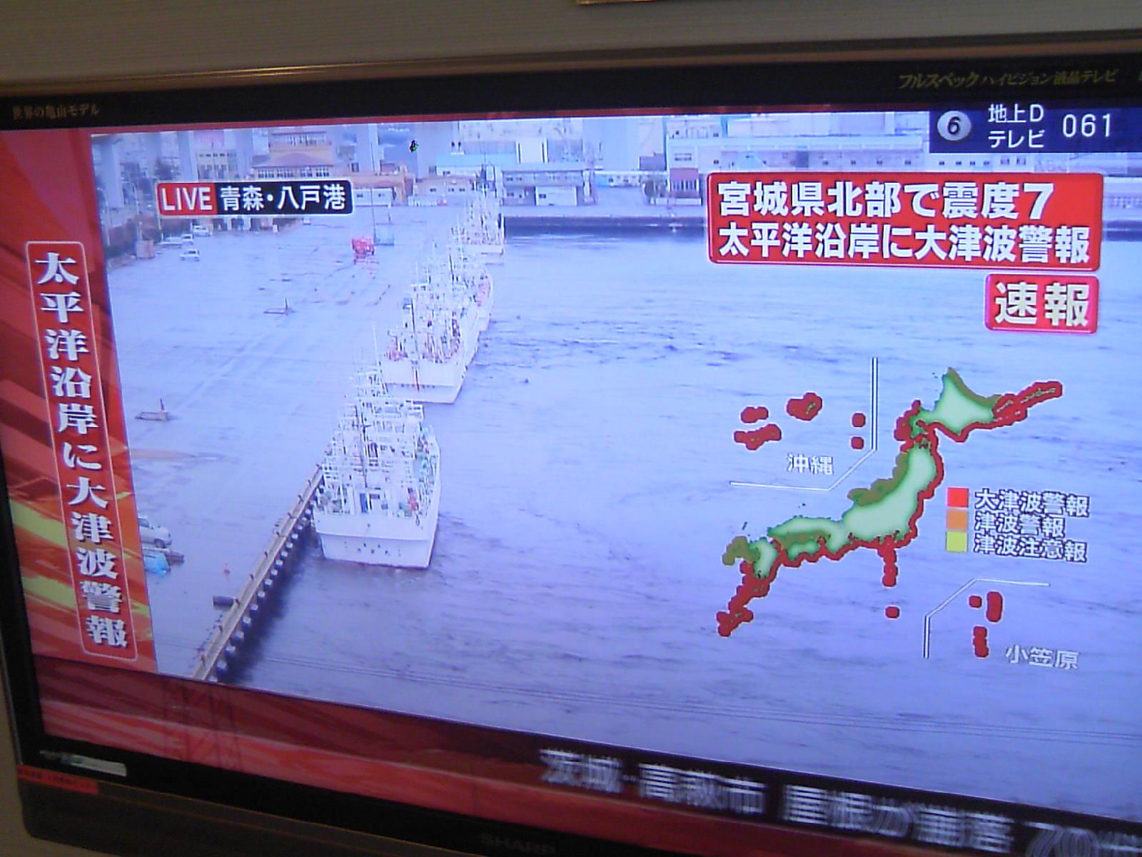 地震&津波