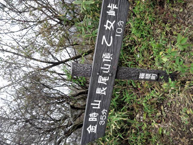 長尾山 山頂