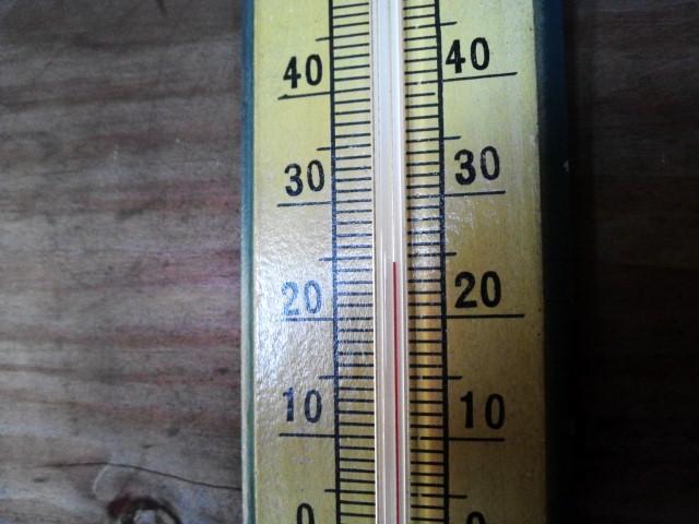 涼しいですね