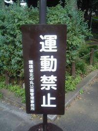 Photo_510