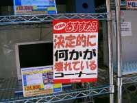 Photo_566
